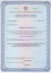 lizenziya list1
